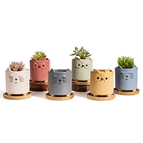 T4U Succulent Pots Ceramic Cartoon 2.5 Inch with Saucer Set of 6, Matte Collection Small Cute Colorful Animal Planter, Plant Herb Cactus Container for Indoor Home Office Owl Cat Decor Child Mom Gift