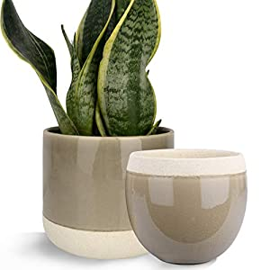 Ceramic Flower Plant Pots – 6.5 + 4.9 Inch Indoor Planters, Plant Containers with Cracked Glass Detailing, Taupe