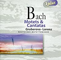 Bach: Motets and Cantatas