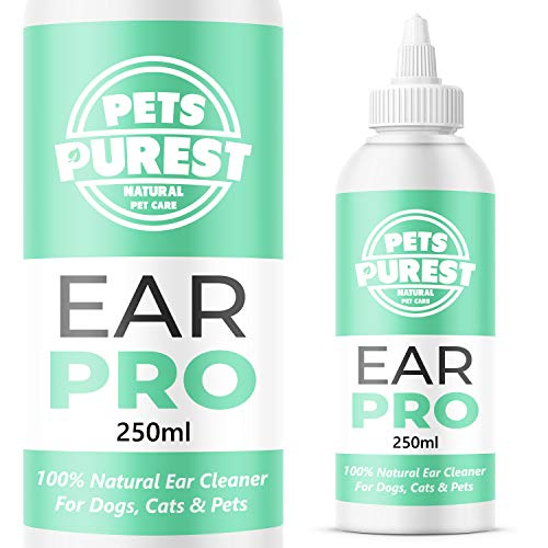 Pets Purest Ear Cleaner For Dogs Recommended by UK Vets (250ml) Stop Itching, Head Shaking & Smell – Anti Viral Anti Fungal Mite Repellent Formula - Made In The UK - 100% Natural Cruelty Free