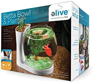 Elive Betta Fish Bowl / Betta Fish Tank with Planter, Small 0.75 Gallon Aquarium, LED Light Timer, White