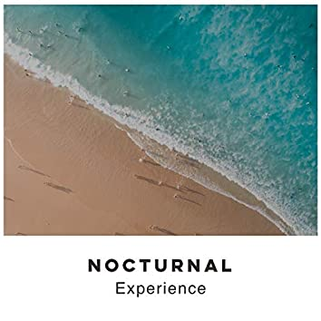 # Nocturnal Experience