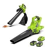 Greenworks Tools GD40BVK2X Aspiradora de Batería y Soplador de Hojas...