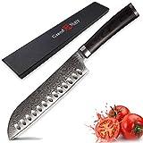 PPLAS Cuchillos Cocina 2021 Damasco Cuchillo de Cocina Japonés Damasco VG10 Pro Cuchillo Cuchillo Japonés Santoku Cuchillos Cuchillos Caja de Regalo Funda Profesional (Color : A)