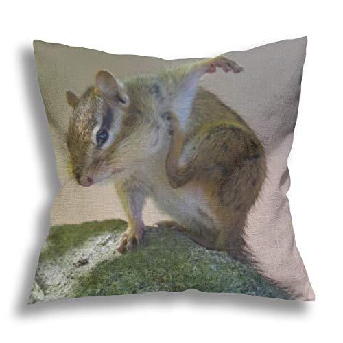 Funda de almohada decorativa de lino rayado con roedores de ardilla, para sofá, silla, cama, coche, decoración del hogar, oficina, 45,7 x 45,7 cm
