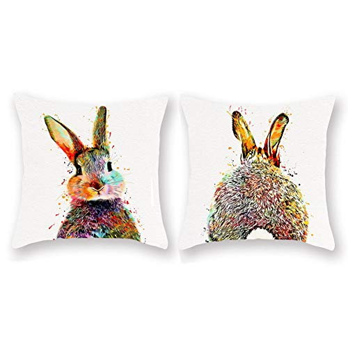 Aremetop Watercolor Bunny Rabbit Throw Pillow Covers Set of 2 Easter Bunny Feed Pattern Super Soft Home Decorative Cushion Cover Pillow Case Square Pillowcase 18 x 18 Inches