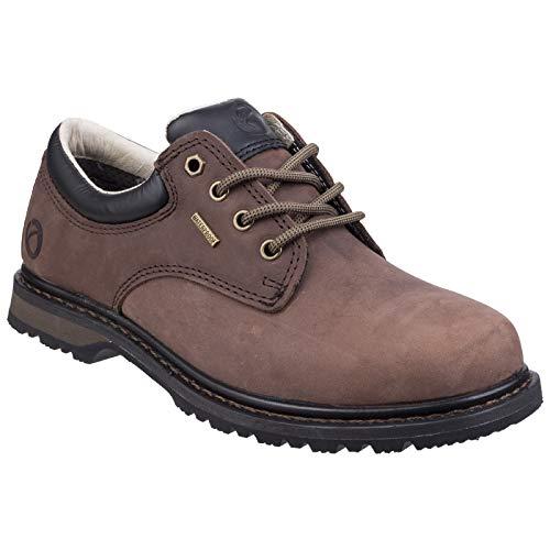 Cotswold - Chaussures de randonnée - Hommes (43) (Marron)