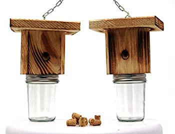 Mac s Best Brothers Rustic Wood Carpenter Bee Trap Set of 2