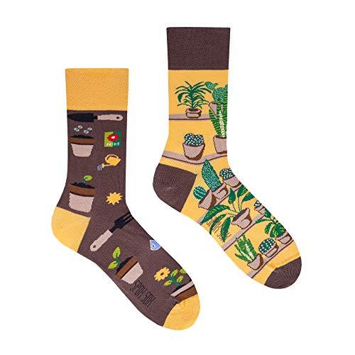 Spox Sox Casual Unisex - mehrfarbige, bunte Socken für Individualisten, Gr. 36-39, Pflanzen