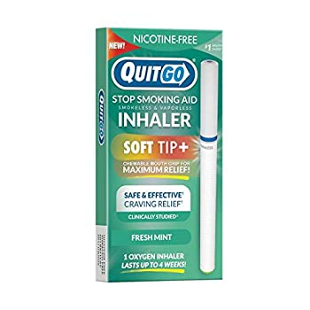 Quit Smoking Aid Oxygen Inhaler + Soft Tip Chewable Filter to Help Curb Cravings Nicotine Free Non-Addictive Stop Smoking Support & Oral Fixation Relief  1 Pack Fresh-Mint