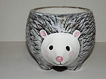yarn bowl with nose