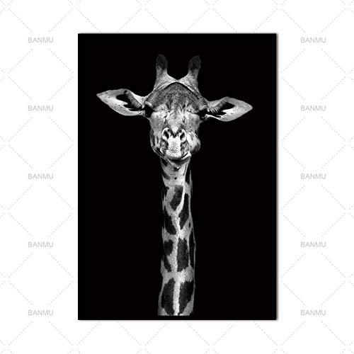 YAZHIQT Canvas Picture Print,Canvas Dier Schilderij Schattig Dier Giraffe Picture Wall Art Zwart En Wit Foto Print Schilderij Thuis Woonkamer Decoratie Geen Frame 50×70cm No frame