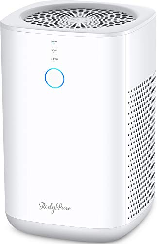 Redypure Air Purifier for Home - Double H13 True HEPA Filters, Remove 99.97% Smoke, Dust, Mold, Pollen, for Allergies and Pets, Quiet for Bedroom & Office - JR6