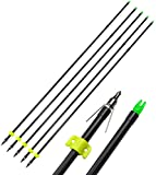 AMEYXGS 6/12pcs Archery Fiberglass Bowfishing Arrow Bow Fishing Arrows with Broadheads and Safty Slides for Compound and Bow Recurve Bow Fishing Hunting (Black, 12 PCS)