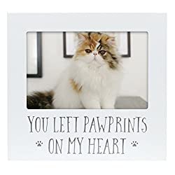 Cat memorial products
