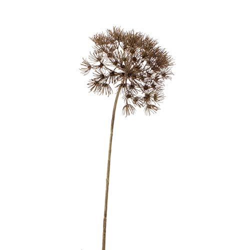 artplants.de Künstliche Bärenklau Dolde Jerome, grau, 80cm - Kunst Herkules Pflanze - Dekozweig