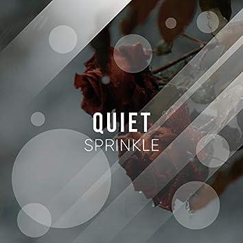 # 1 Album: Quiet Sprinkle