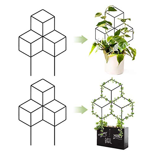 Best small trellis
