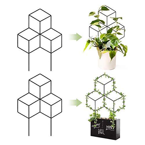 ZNCMRR Metal Garden Trellis Black Coated Plant Trellis for Indoor Outdoor Climbing Plants in Pots,...