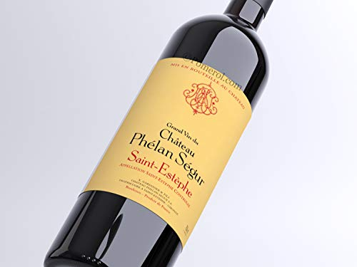 X1 Château Phélan Ségur 2015 75 cl AOC Saint-Estèphe Rouge Vin Rouge