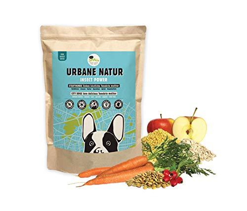 eat small URBANE Natuur eiwitrijk hondenvoer van insecten voor stadshonden, per stuk verpakt (1 x 2000 g)