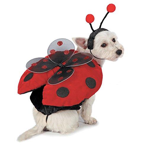 Pet Edg Casual Canine Coccinella Costumi per Cani