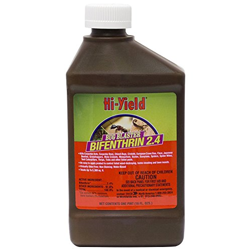 Voluntary Purchasing Group Concentrate Bug Blaster, 16 oz