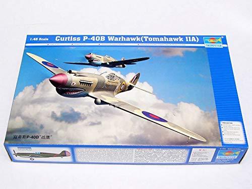 Trumpeter 02807 Modellbausatz Curtiss P-40 B Warhawk