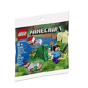 © 2019 The LEGO Group / Amazon.co.jp - レゴ マインクラフト スティーブとクリーパー  30393