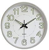Reloj de Pared Moderno silencioso, sin tictac, Funciona con Pilas, Redondo, fácil de Leer, Relojes de Pared de Cuarzo para Sala de Estar, Cocina, Escuela, Oficina (Plata Luminosa)