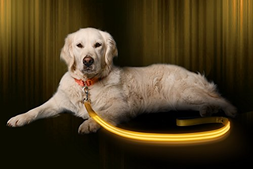 Illumiseen LED Dog Leash