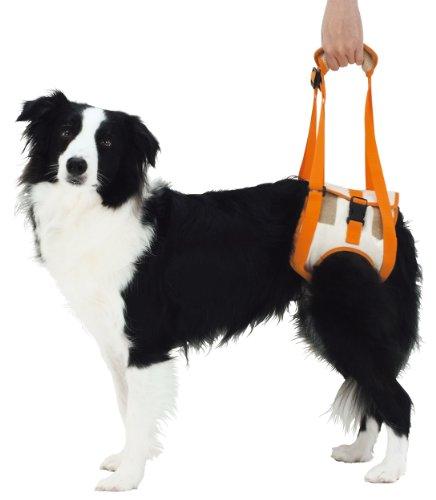 ペティオzuttone(ずっとね)『老犬介護用歩行補助ハーネス後足用K2L(W23630)』