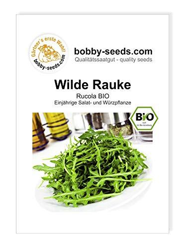 Wilde Rauke Rucola BIO Salatsamen von Bobby-Seeds Portion