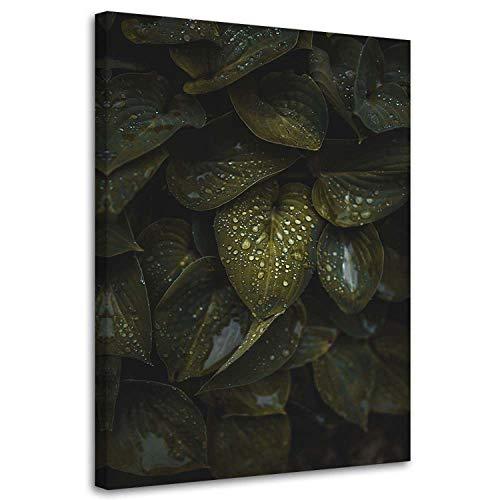 Imagen Moderno Agua 40x60 cm Impresión Lienzo Planta Verde
