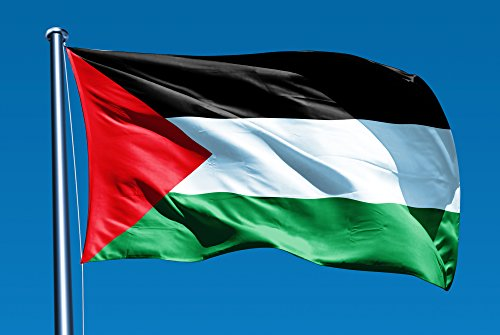 Flag of Palestine 3x5 ft Flags 3 x 5 Palestinian NEW