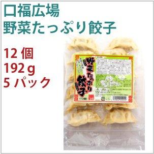 口福広場 野菜たっぷり餃子  192g 12個  5パック  【送料込】