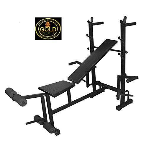 GOLD FITNESS 8 In 1 Bench for Body Building Gym Work Out