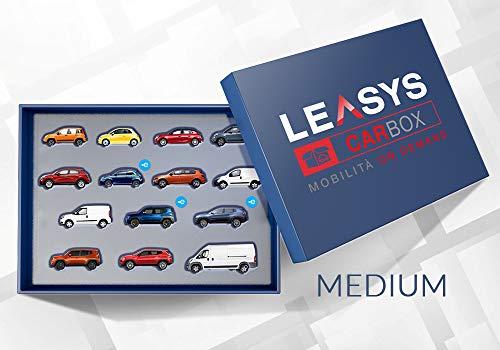 Iscrizione Abbonamento Leasys CarBox Medium | Mobilità on-demand da utilizzare per 240 giorni in 1 anno