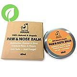Balsamo biologico per zampe e naso, 100% naturale per riparare zampe e naso screpolati e prurito | Crema anti fungine e protezione sicura per zampe e naso per cani