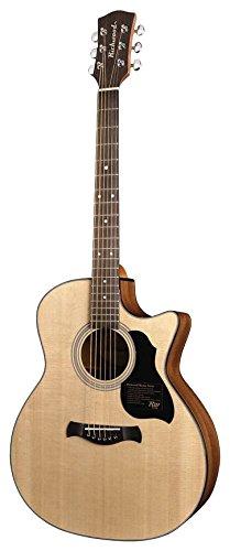 Richwood G-40-CE Gitarre