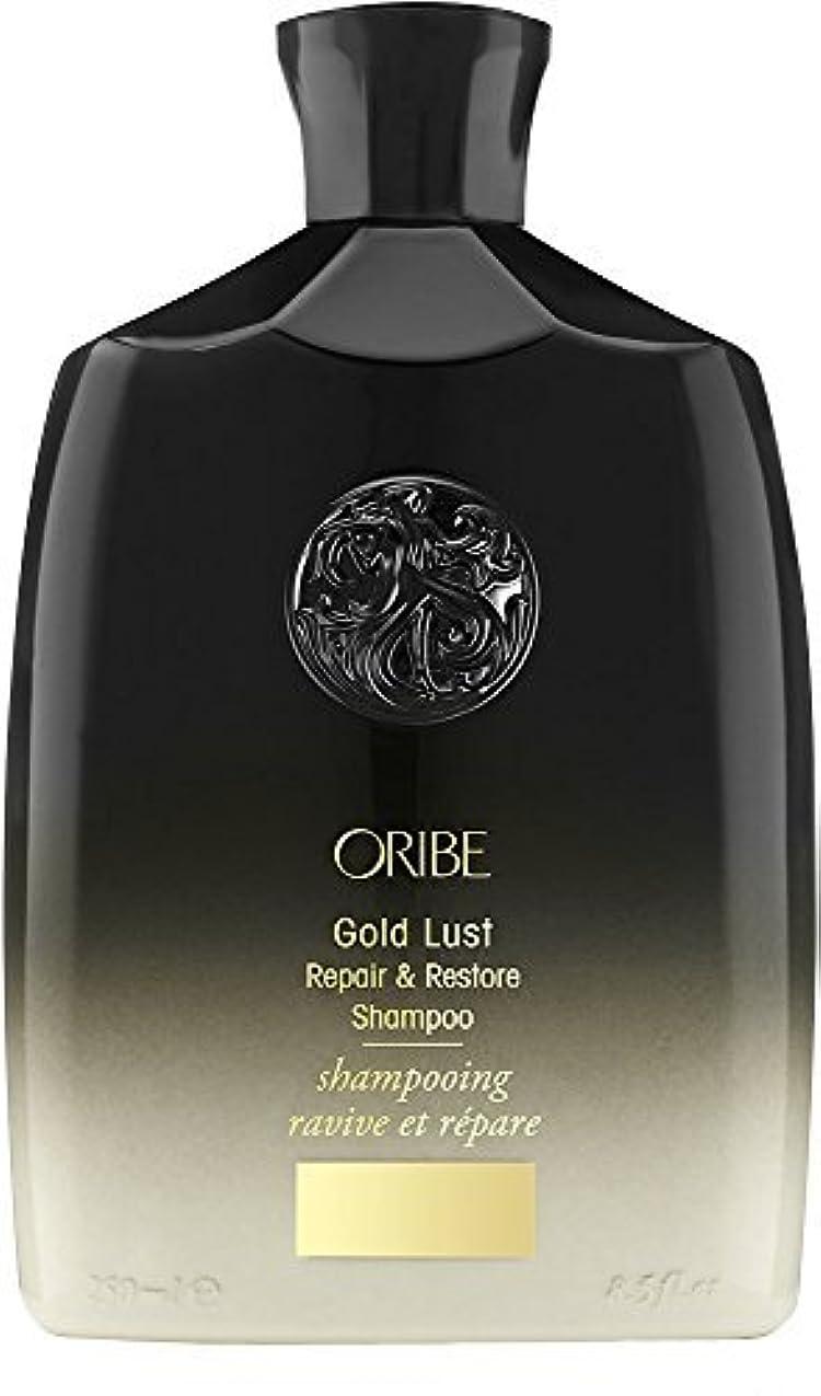 時系列デマンドサスペンションORIBE Gold Lust Repair & Restore Shampoo 8.5 fl. oz. [並行輸入品]