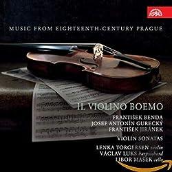 Lenka Torgersen, Violon : Il Violino Boemo