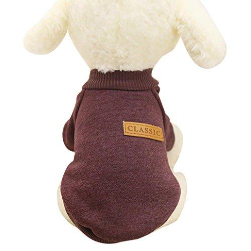 Ularma Kleine Haustier Hund Pullover Soft Bequem Sweatshirt 8 Farben für Teddy Mops Bulldogge (XL, Kaffee)