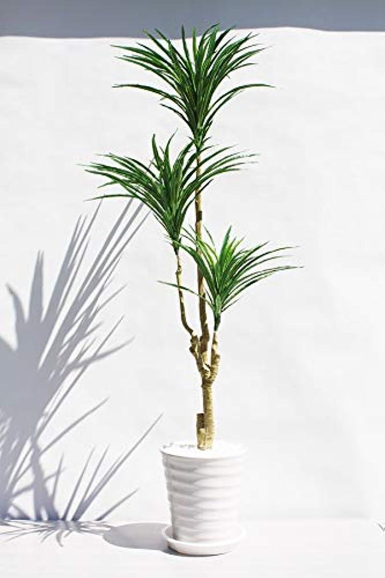 馬鹿汚物行き当たりばったりインテリアグリーン人工観葉植物、新ユッカ3本立て陶器鉢受け皿付き?光触媒製品