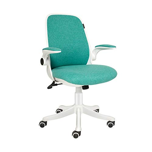 ELECWISH Office Chair with Flip-up Armrest, Ergonomic Computer Chair with Adjustable Lumbar Support, Desk chair Compact Design 120° Locking 360° Rotation (Green, Thicken)