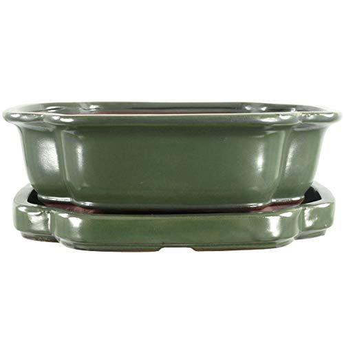 Bonsaischale mit Untersetzer 25x20x8cm Grün Sonstige Form Glasiert
