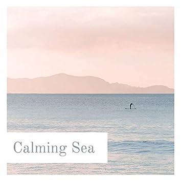 Calming Sea: Relaxing Ocean Waves, Seagulls, Paradisiac Tropical Beach with Sun, Blue Sky and Nature Sounds