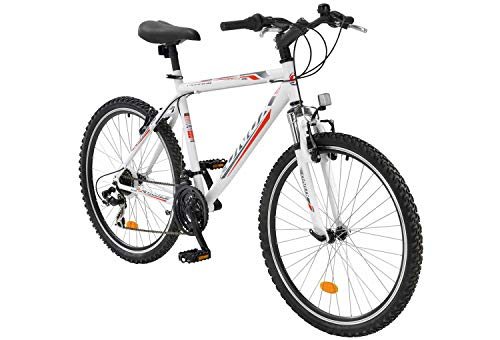tretwerk DIREKT gute Räder Onux Morning 28 Zoll Mountainbike, Jungen-Herren-Fahrrad