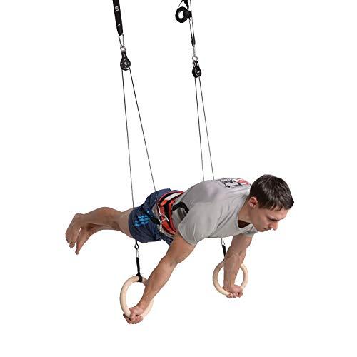 Modular Sports FlyFit Premium Edition | Fitnessgerät | Trainingsgerät | Training Ringe | Trainingsringe| Training Körpergewicht | Klimmzugstange | Turnringe | Schultern Krafttraining | Fitnessstange