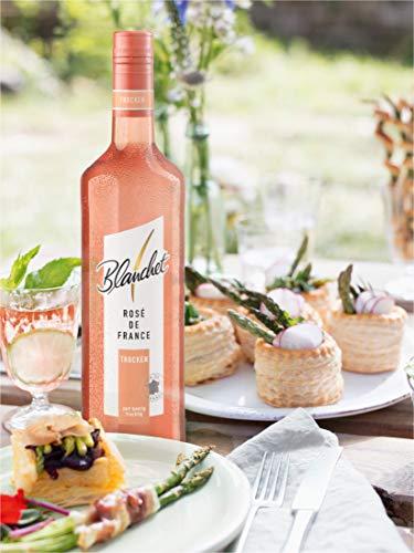 Blanchet Rosé de France Trocken - 5